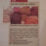 article dans le progrès de la boutique le lyon qui tricote