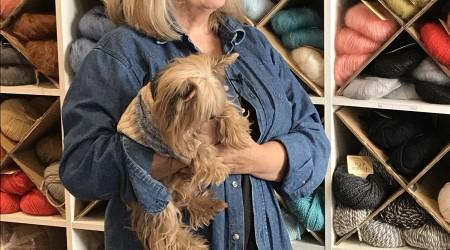 tricot pour chien lyon
